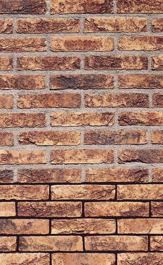 LIPEA - obkladový pásek FB 1205 030 Violet / fasáda z obkladových pásků/ cihlový obklad/ www.lipea.cz